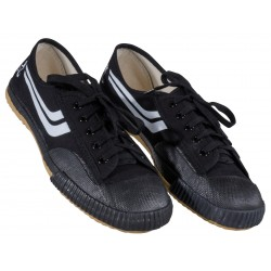 CHAUSSURES KUNG FU KWON