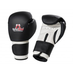 BOXING GLOVES MASTER PUNCH DANHRO