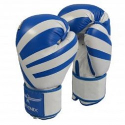 BOXING GLOVES PHOENIX LEATHER BLUE-WHITE