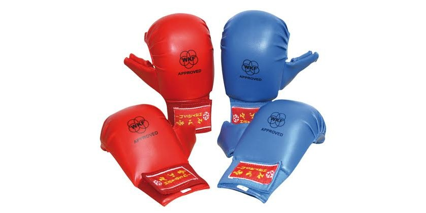 PROTECTIONS HOMOLOGUEES WKF